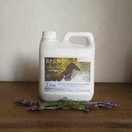 Rejuve – Electrolyte, Energy Support Blend