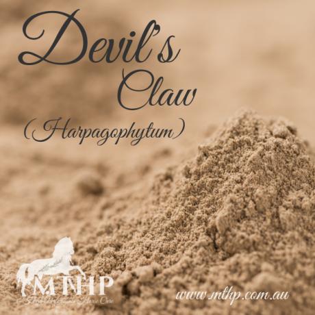 Devil's Claw Sq