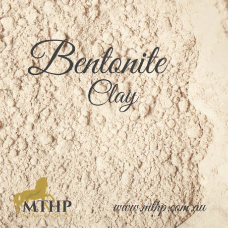 Bentonite Clay Sq