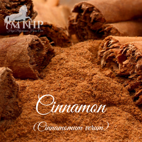 Cinnamon Sq