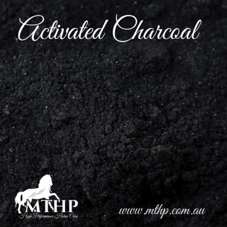 Activated Charcoal Sq