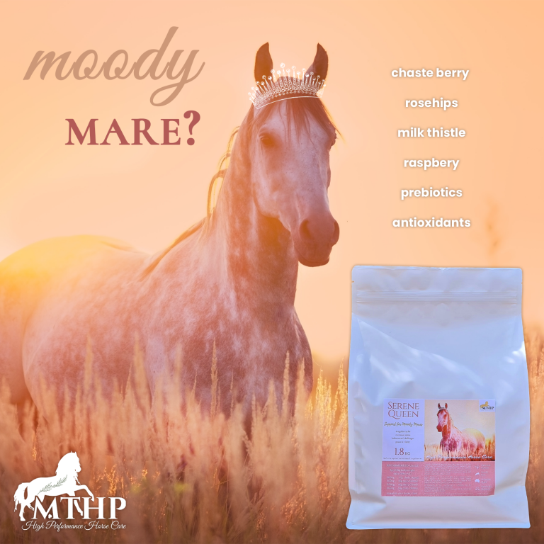 Serene Queen – Support for Moody Mares