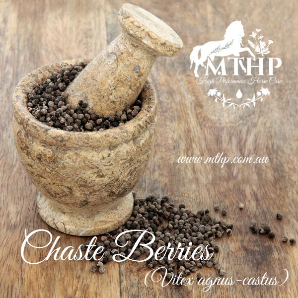 Now Available – Chaste Berries